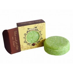 Shampooseife Olive