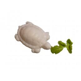 mini-schildkroete-giessseife-einseifer