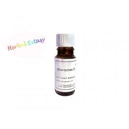 Duftöl Herbal Extasy 10ml